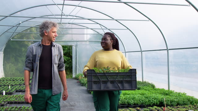 garden workers walking together in greenhouse - gardening video stock e b–roll