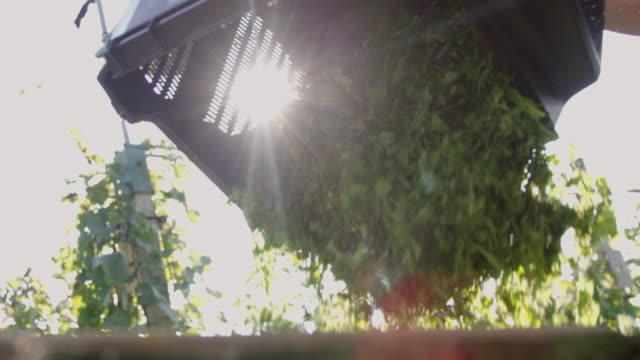 SLO MO Gardener emptying a grass catcher video