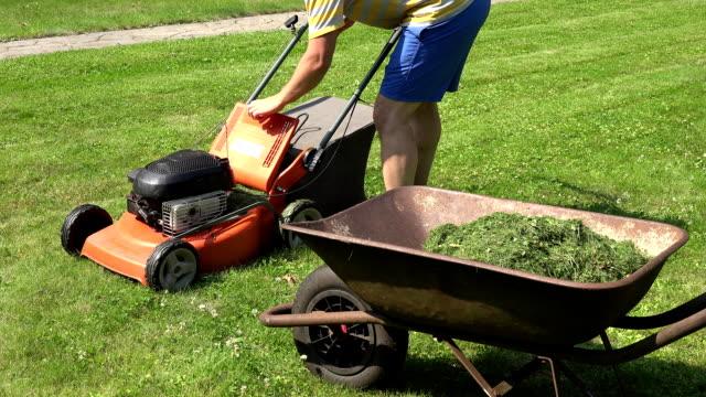 gardener guy unload grass from lawn mower bag into barrow. FullHD video