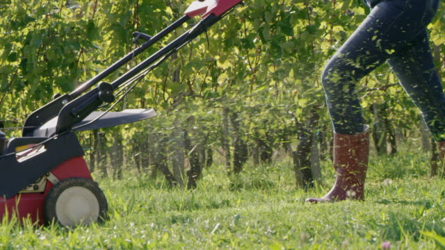 SLO MO Gardener mowing the grass in a vineyard video