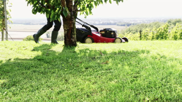 SLO MO Gardener mowing the lawn with a mower video
