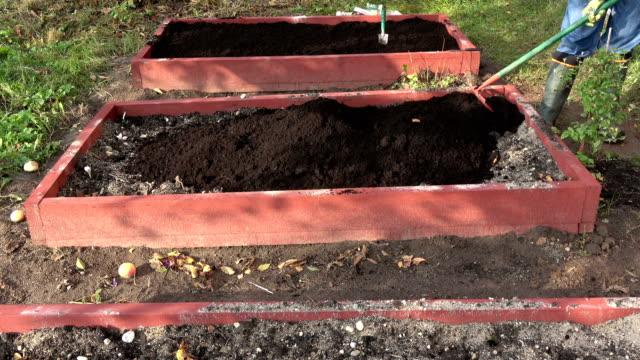 gardener raking mould in new wooden raised garden bed