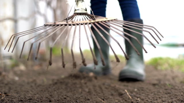 Gardener wearing rubber boots raking soil video