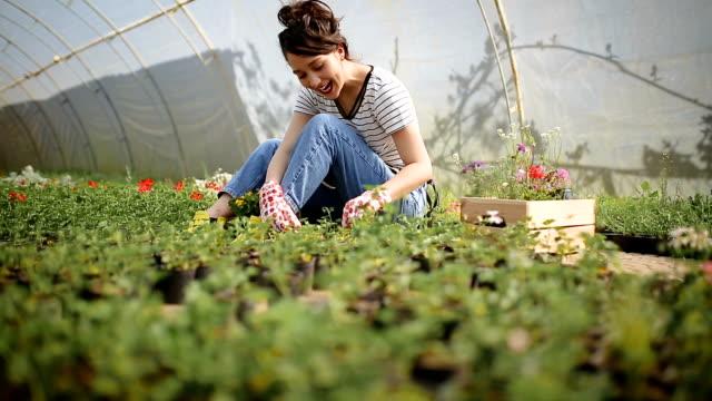 bahçıvan kadın çiçek dikim - bahçe ekipmanları stok videoları ve detay görüntü çekimi