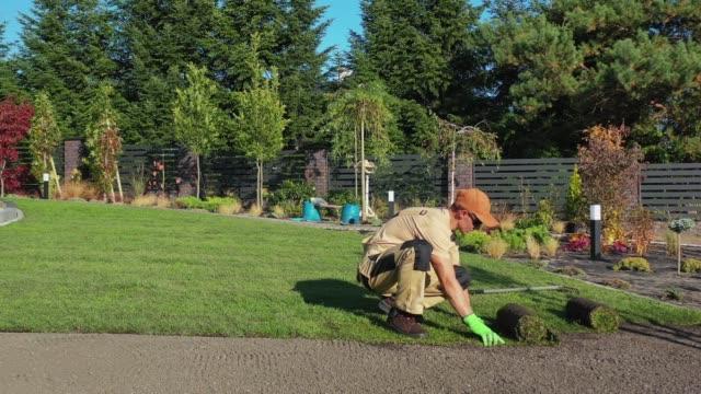 trädgårdsskötsel och landskapsarkitektur - gräsmatta odlad mark bildbanksvideor och videomaterial från bakom kulisserna