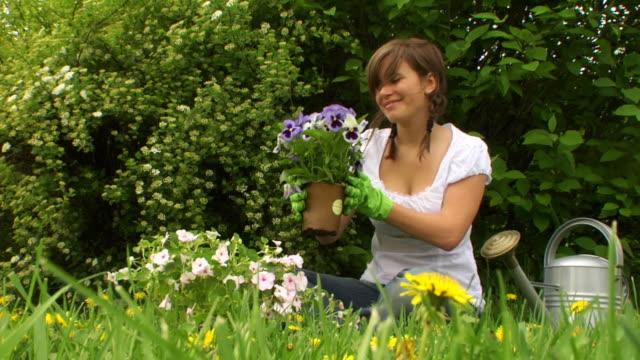 ガーデニングの花 - ガーデニング点の映像素材/bロール