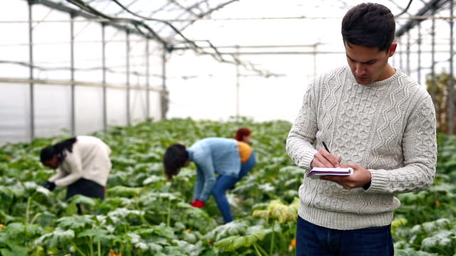 Gardening researches video