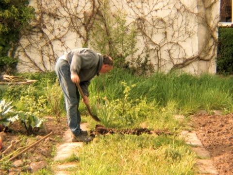 ntsc: gardening - skyffel bildbanksvideor och videomaterial från bakom kulisserna