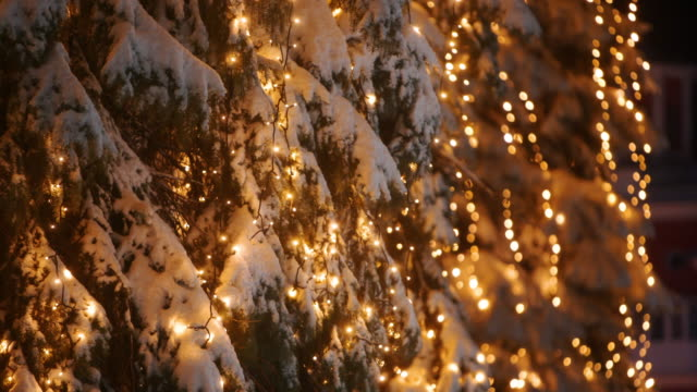 Garland lamp lights on Christmas trees. Festive illumination on the fir-trees at the streets on New Year's Eve. Winter night. Snowy spruce branches. Snowfall. Snow falling. Right and left panorama