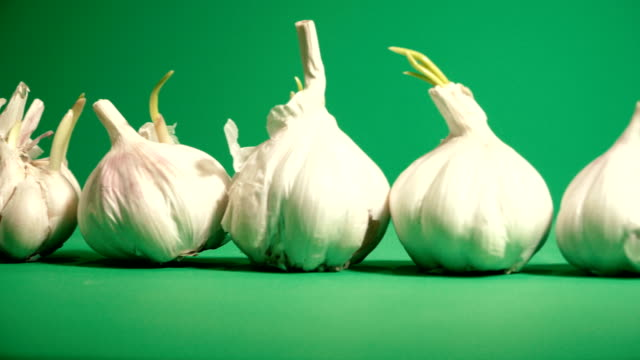 garlic. garlic on a green background - aglio alliacee video stock e b–roll