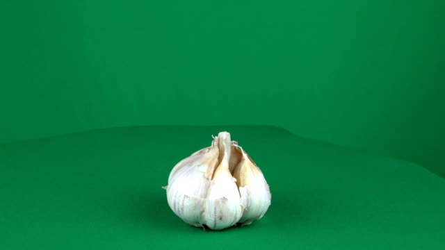 Garlic Rotating in Green Screen Chroma Key Matte - video