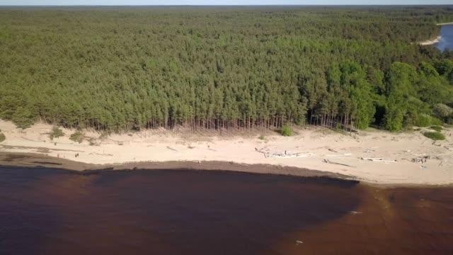 ガウヤ川ラトビアは、バルト海空中ドローン平面図 4 k uhd ビデオに流出します。 - マルチコプター点の映像素材/bロール