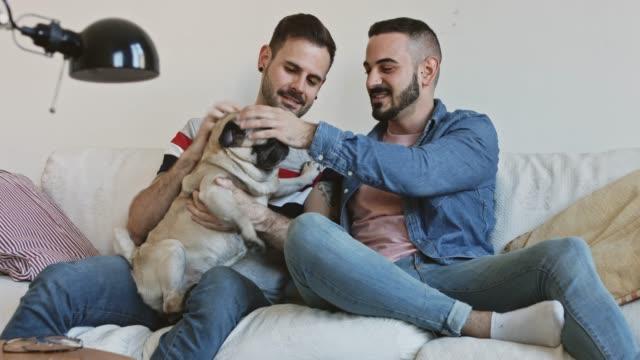 schwul-paar kuschelt ihren hund auf sofa - gay man stock-videos und b-roll-filmmaterial