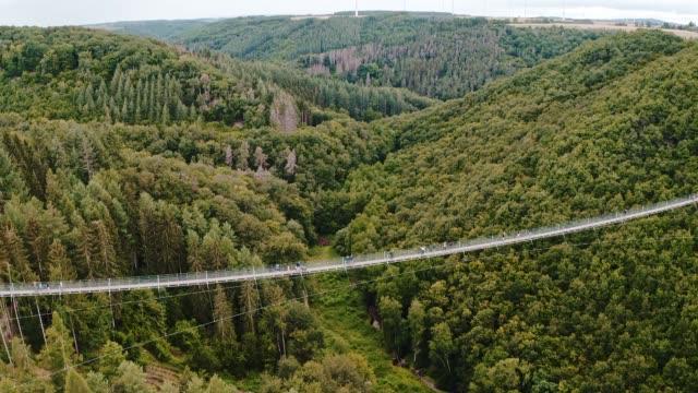 geierlay supsension bridge in the hundsrück germany geierlay supsension bridge in the hundsrück germany suspension bridge stock videos & royalty-free footage