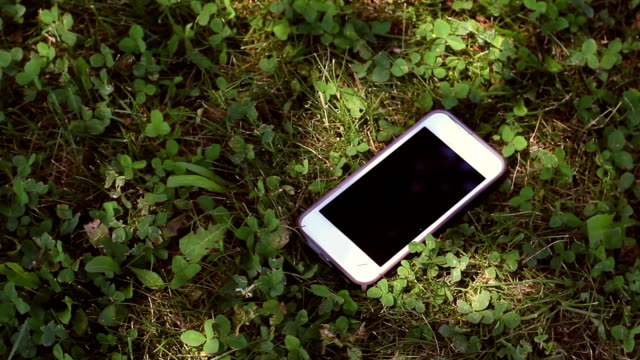 generic smartphone lying in the grass in a nature park during summer day - lost стоковые видео и кадры b-roll