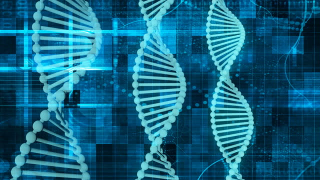 Genetic Code Sequence of DNA Protein Art Genetic Code Sequence of DNA Protein Art morality stock videos & royalty-free footage