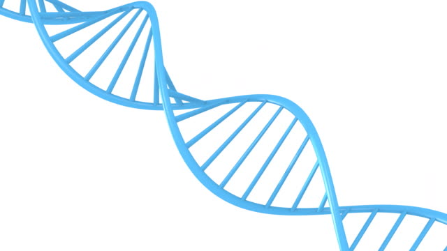 Genetic data string concept of a blue double helix DNA molecule, seamless 3D animation loop video