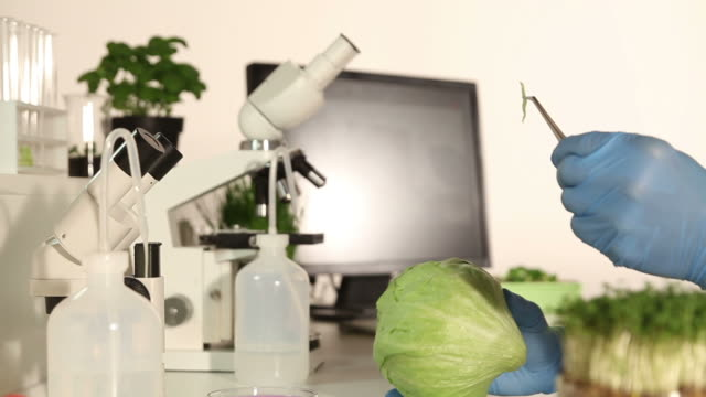 Genetic Research Lab - Food Control video