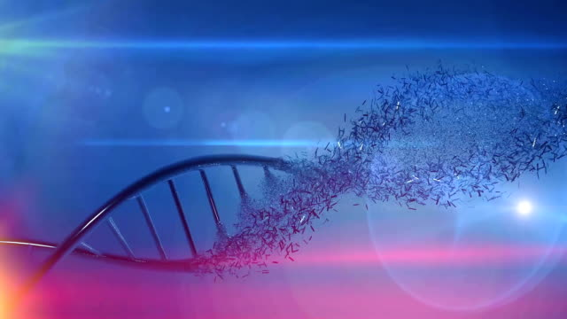 Genetics research DNA  medical background