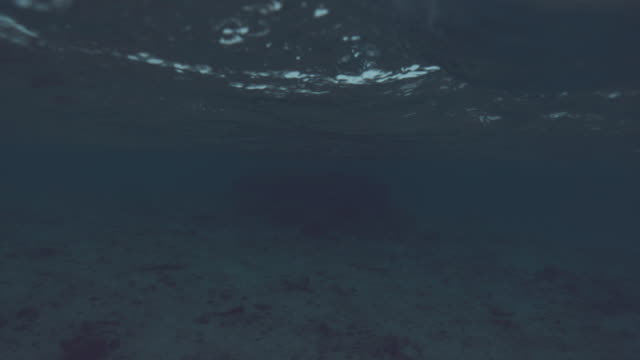 vídeos de stock e filmes b-roll de slow motion: gentle little wave rolls over the submerged camera in the dark sea. - oceano pacífico