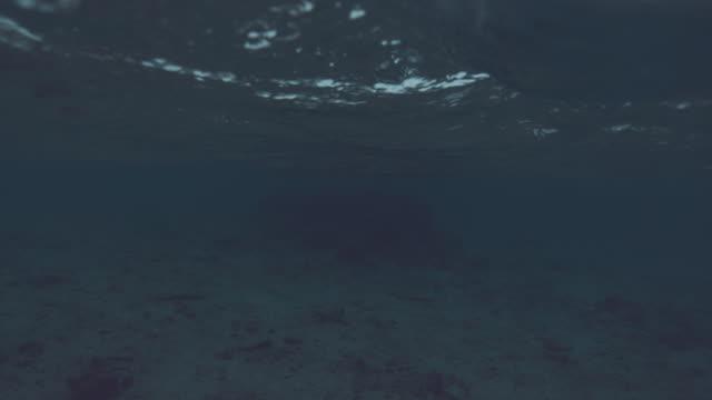 slow motion: gentle little wave rolls over the submerged camera in the dark sea. - ocean spokojny filmów i materiałów b-roll