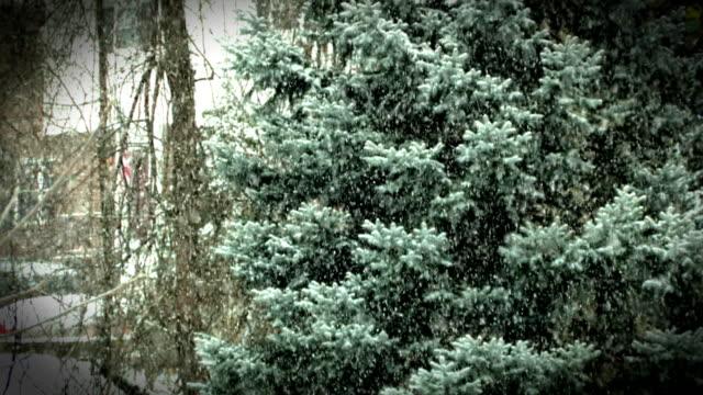 Gentle Snowfall Rack-Focus video