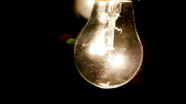 gently illuminate a light bulb - cavo componente elettrico video stock e b–roll