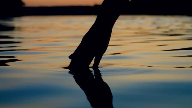 stockvideo's en b-roll-footage met zachtjes raakt het oppervlak van het water met je vingertoppen in de zonsondergang - lood