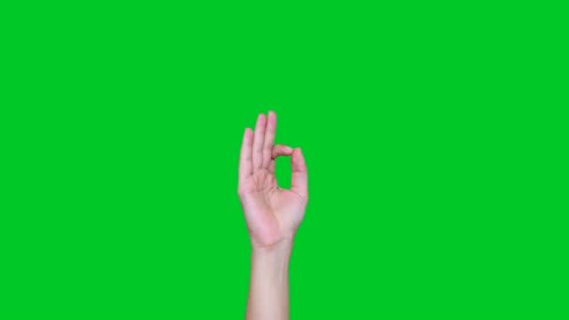 ok gesture signs on chroma key - icona mi piace video stock e b–roll