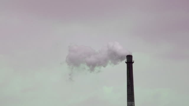 vídeos y material grabado en eventos de stock de volver a la smog - bajo posición descriptiva