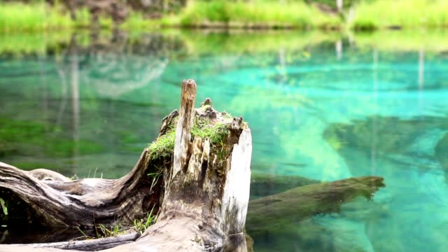 geyser lake in Altai in Russia blue geyser lake in Altai in Russia panorama siberia stock videos & royalty-free footage