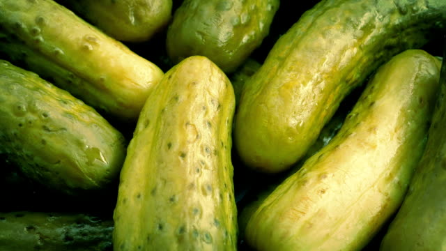 Gherkins Rotating Closeup Macro shot of gherkins turning slowly pickle stock videos & royalty-free footage