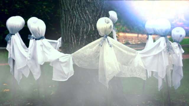 Ghosts Around a Tree video