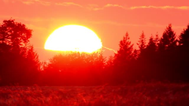 Giant sun in the dawn video