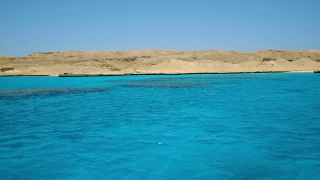 vídeos y material grabado en eventos de stock de isla giftun cerca de hurghada, costa del mar rojo, egipto - coral cnidario