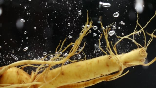 Ginseng falling in water slow motion video