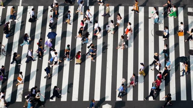 stockvideo's en b-roll-footage met ginza zebra crossing, japan - oversteekplaats