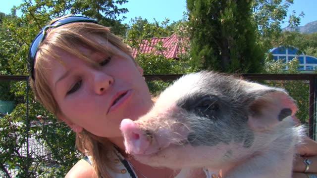 少女と豚の - 子豚点の映像素材/bロール