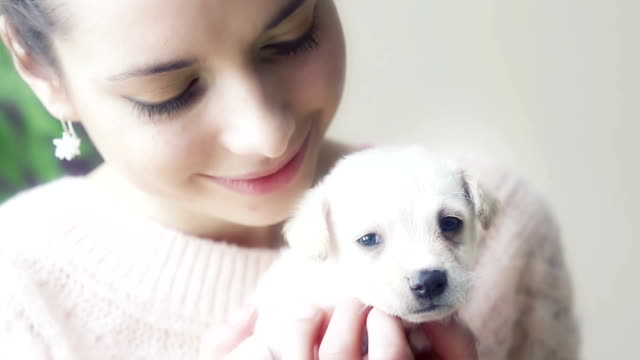 Girl and puppy video
