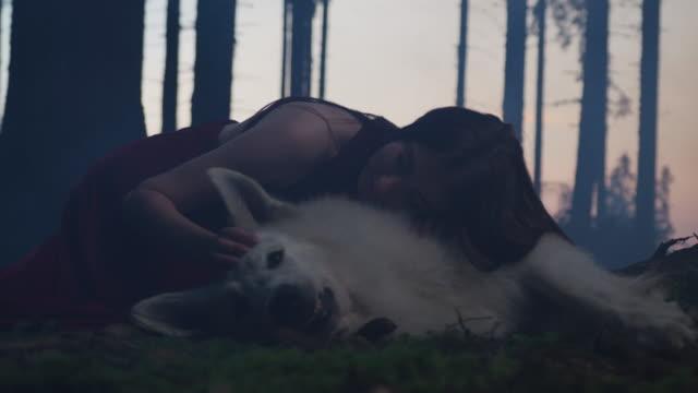 flicka smekande en hund - hund skog bildbanksvideor och videomaterial från bakom kulisserna