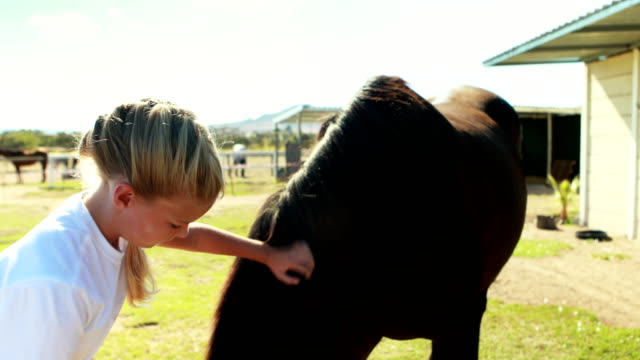 Girl caressing the horse in the ranch 4k video