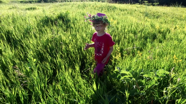 Girl child walks on a meadow. The girl collects wild flowers. video