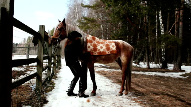 girl cowboy horse saddles video