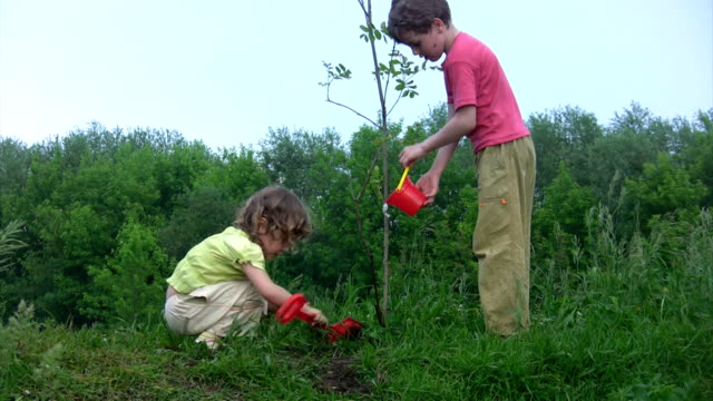 Girl digging, boy with bucket watering plant video