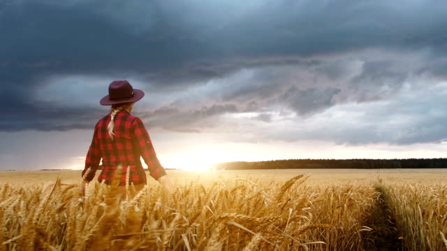 Girl farmer and field of wheat.