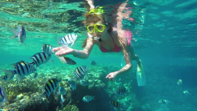 Girl feeding fish in the sea.