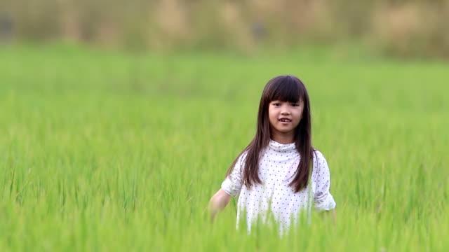 vidéos et rushes de fille se sentir profiter de cache-cache jouer à la rizière. - indonésie