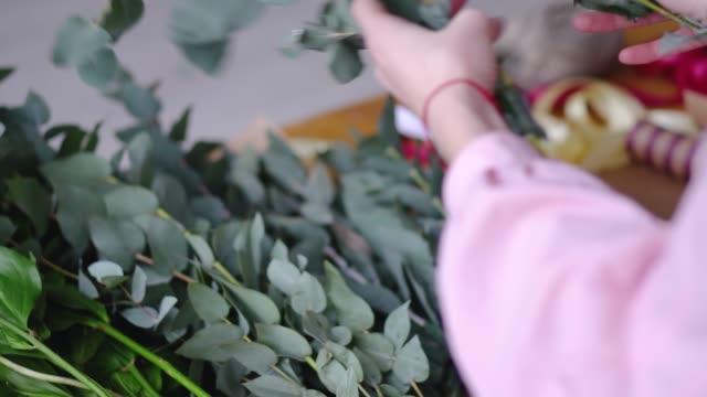 flicka florist väljer eucalyptus för dekoration. närbild. - eucalyptus leaves bildbanksvideor och videomaterial från bakom kulisserna