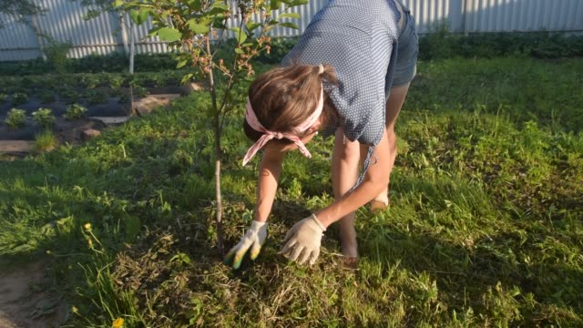 girl gardener puts grass under a tree