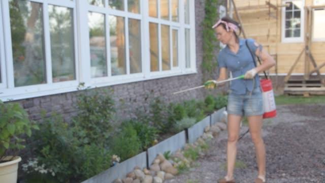 vidéos et rushes de le jardinier de fille traite des fleurs avec l'engrais - herbicide